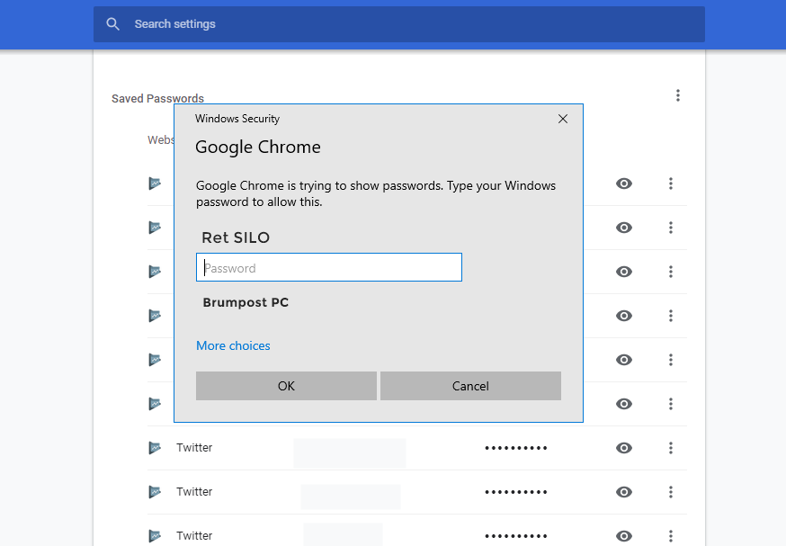 View saved password in Chrome for PC